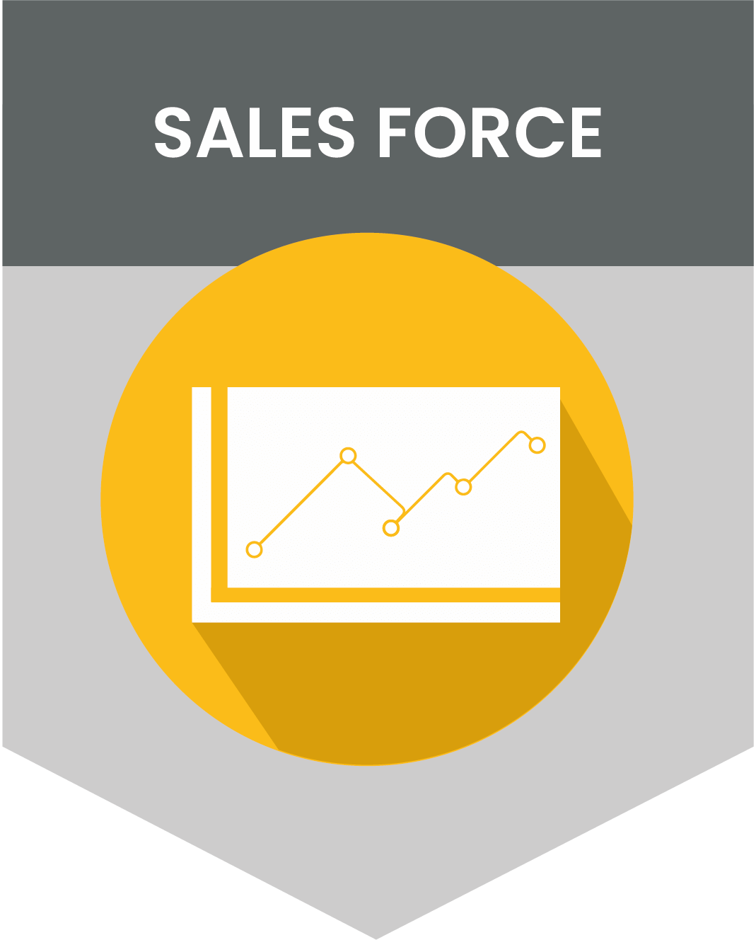 sales force-e-commerce-data impact-client-partner
