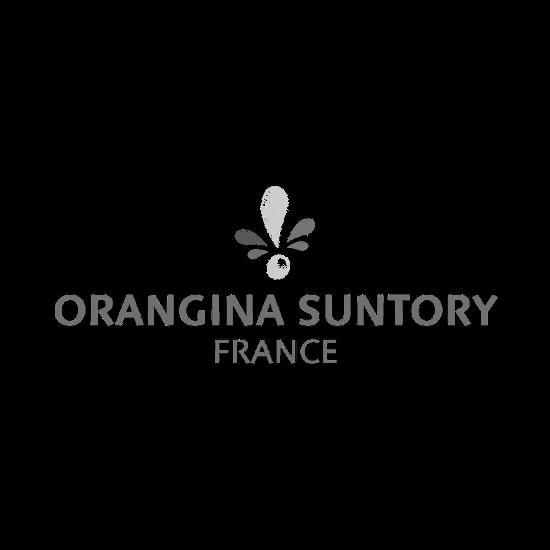 Orangina Suntory digital CPG